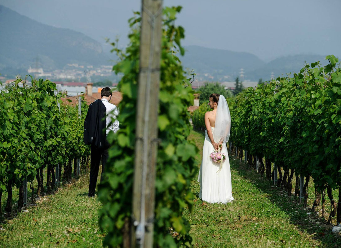 vineyard-tuscany-wedding